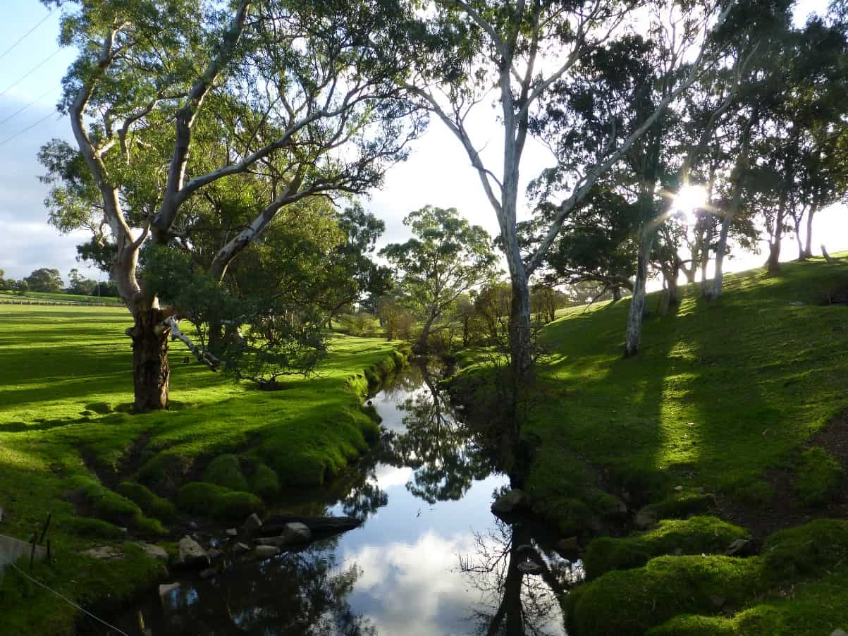 The Adelaide Hills Re Max Hills Amp Country South Australia